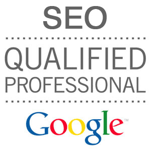 google seo professionals in dublin